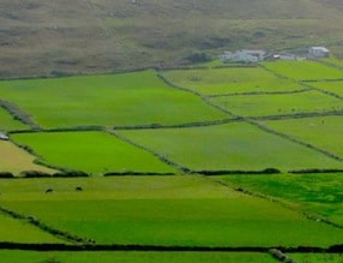 Irland im Herbst 2017: Forty Shades of Greed 2.0?