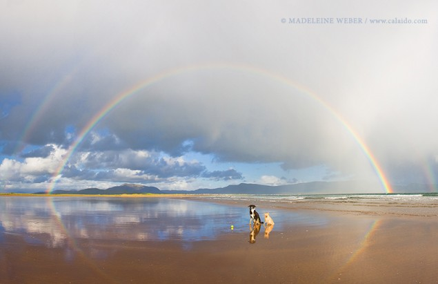 Regenbogen am Meer in Irland