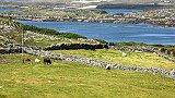 Irland TV-Tipp, Irlands rauer Westen - Connemara