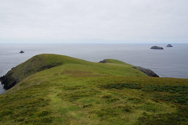 Die westliche Spitze von Dursey Island mit (v.l.) Calf, Cow und Bull Rock