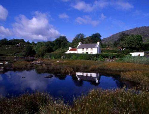 Der Traum vom gemütlichen Cottage in Irland