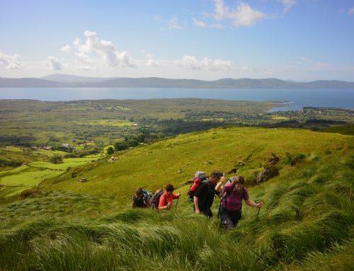Der Gewinn: Eine Interntet-freie Woche in der Natur