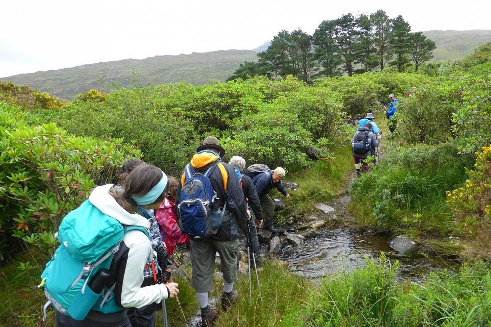 Irland Wanderlust Wandergruppe