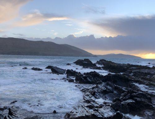 Der siebte Tag: Irland in den Zeiten von Corona
