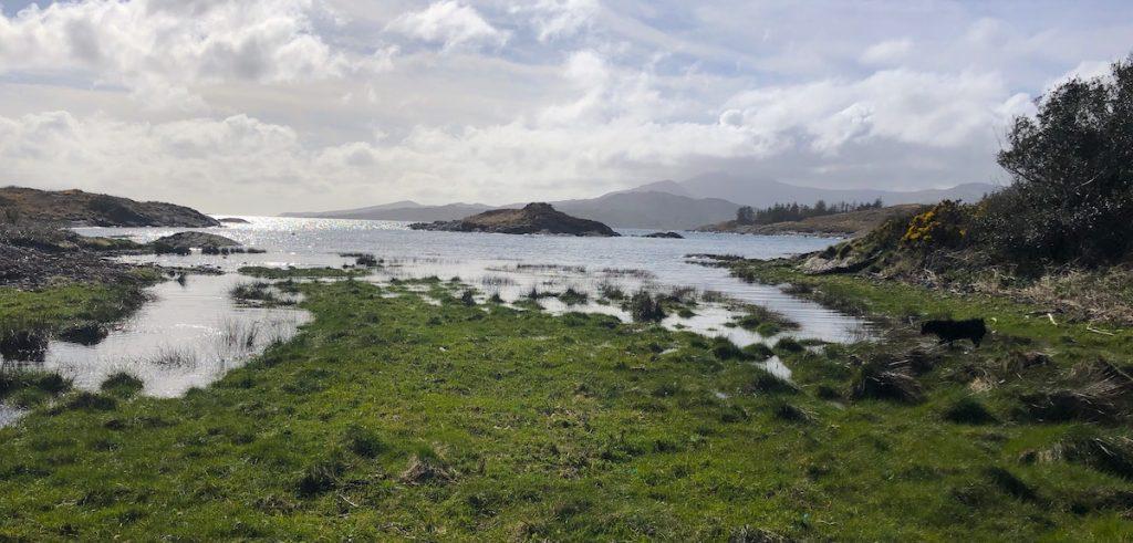 Irland Mikokosmos