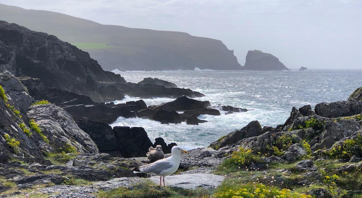 West Cork Küste