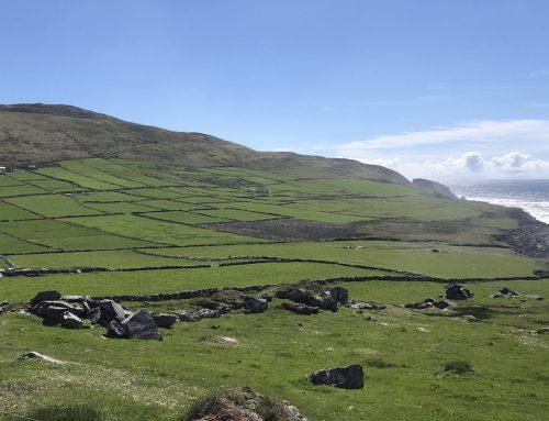 Irland intensiv erleben: 40 Shades of Green