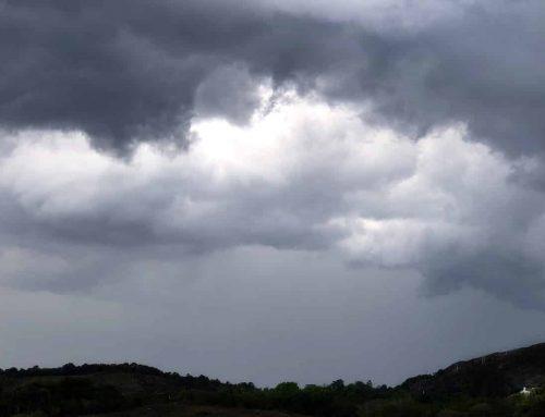 Es ist Sommer in Irland. Schönes Wetter oder Klimakrise?