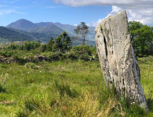Standing Stone: Seit 4000 Jahren aufrecht am selben Ort