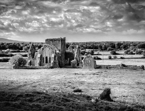 Irland in Schwarz-Weiß: Klosterruine Hore Abbey