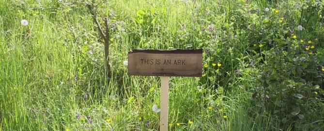 Irlandnews - We are the Ark - Matt Jones