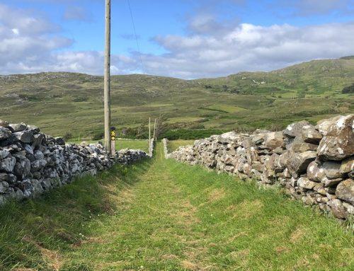 Irlands schönste Sträßchen: Der Weg zum Feriengewinn