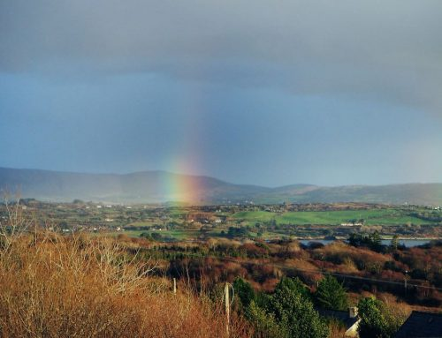 Wege aus der Angst: Irland in den Zeiten von Corona