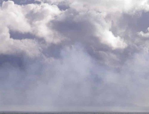 Kälte und Regen: Der frühe Frühling in Irland fiel aus