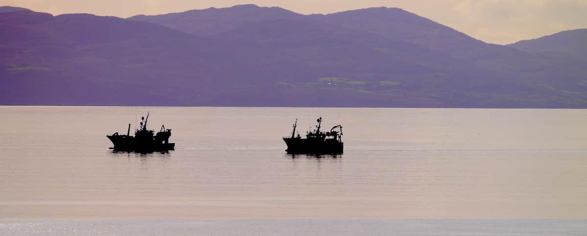 Irland Fischen