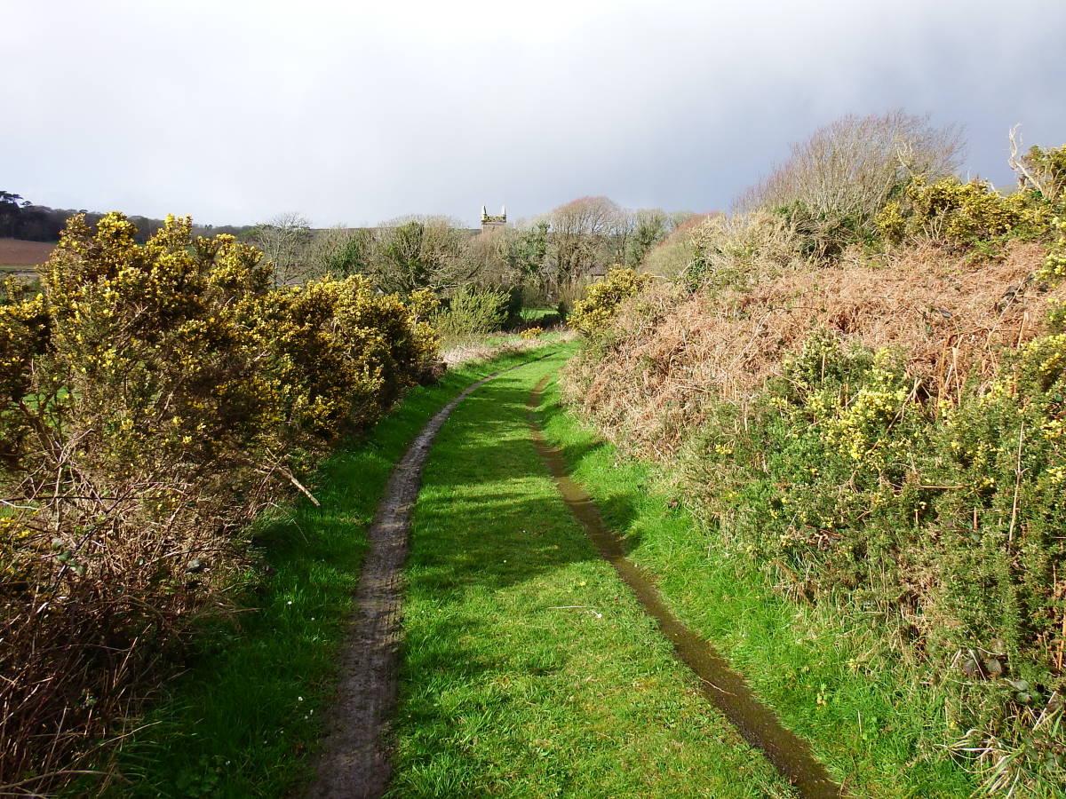 Stille Orte Irlands - Creagh Graveyard