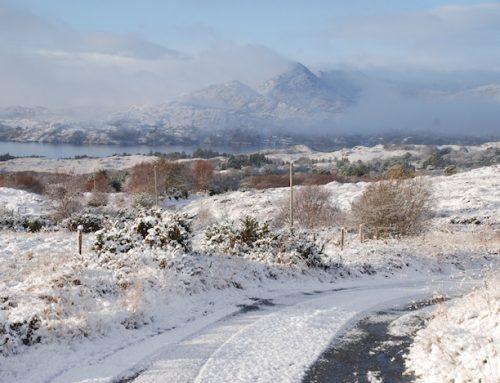 Der Winter in Irland feiert sein spätes Comeback