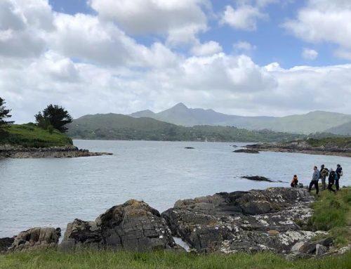 Irlands Super-Sommer bringt Dürre und Wassermangel