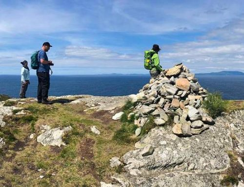 Klein, ökologisch, fein: Wander-Naturferien in Irland
