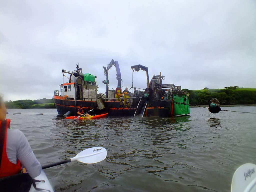 Irlandnews Irland TV-Tipp, Mussel Farmers in Bantry